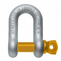 FORGED CHAIN DEE SHACKLE WITH SCREW PIN